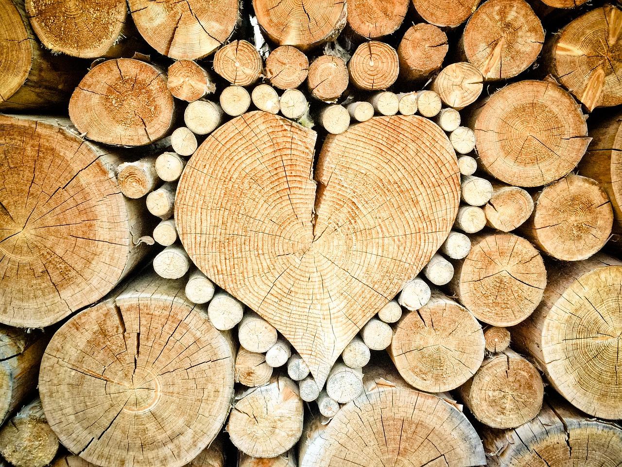 Möbel aus Massiv oder Furnierholz?